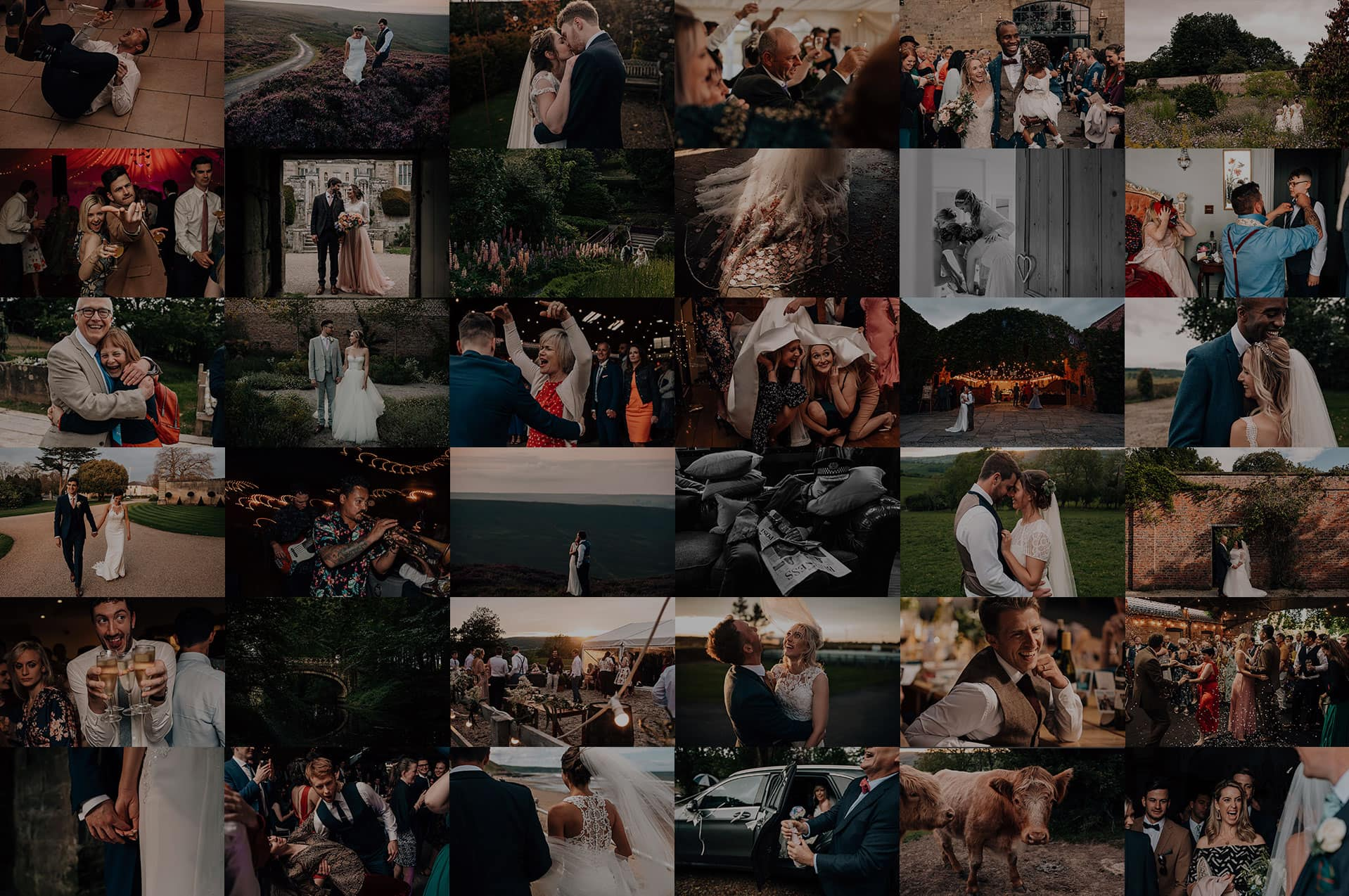 2019 Wedding Photography Highlights